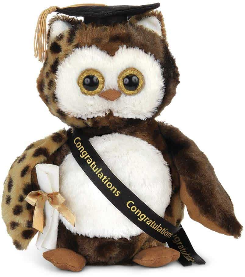 Graduation Plush Stuffed Animal Owl kindergarten graduation gift for boy